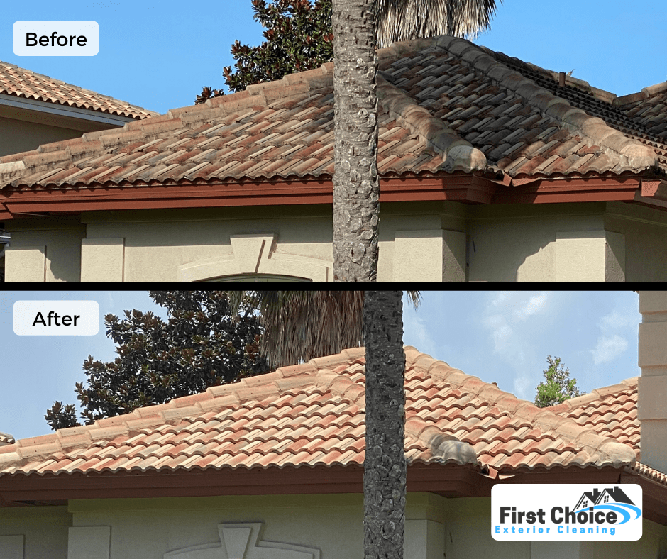 roof cleaning ponte vedra beach fl