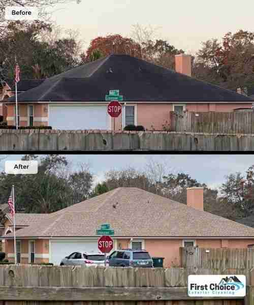 jacksonville roof cleaning company